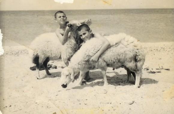 Kamp Armen Eski Fotoğraflar 1